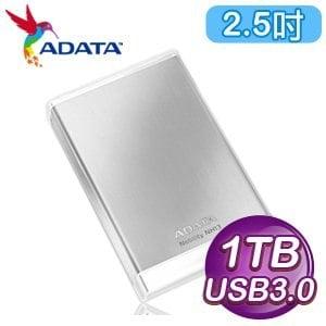 ADATA 威剛 NH13 1TB USB3.0 2.5吋外接式硬碟《冰燦銀》