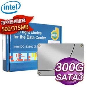 Intel DC S3500 300G SATA3 2.5吋 SSD固態硬碟
