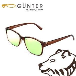 【GUNTER】室內濾藍光戶外抗UV變色眼鏡-極光熊(亮棕/棕)