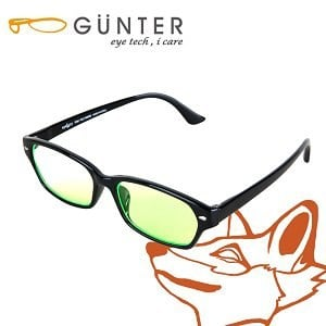 【GUNTER】室內濾藍光戶外抗UV變色眼鏡-極光狐(亮黑/黑)