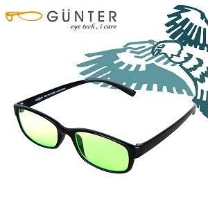 【GUNTER】室內濾藍光戶外抗UV變色眼鏡-極光鷹(亮黑/黑)