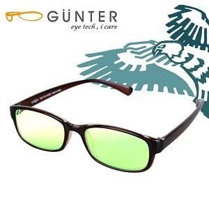 【GUNTER】室內濾藍光戶外抗UV變色眼鏡-極光鷹(亮棕/棕)