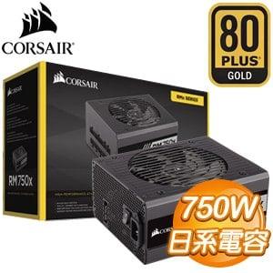 Corsair 海盜船 RM750X 750W 金牌 全模組 電源 器~黑~ 10年保