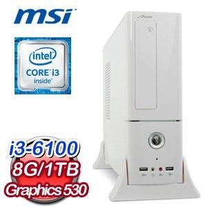 微星 H110 平台【絕地猛將】Intel Core i3-6100 8G 1TB 高效能燒錄電腦