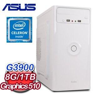 華碩 H110 平台【幻影使徒】Intel Celeron G3900 8G 1TB 文書大容量電腦