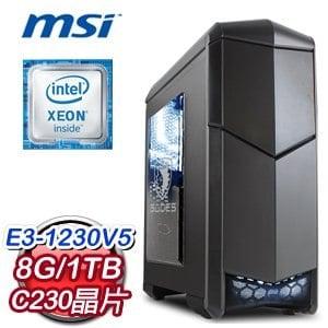 微星 C236 平台【冷蝶】Intel Xeon E3-1230 8G 1TB 高效能電腦