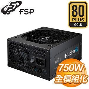 FSP 全漢 黑爵士 HG750 750W 金牌 電源 器 5年保