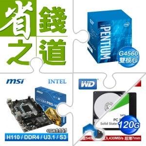 ☆自動省★G4560/3.5G/3M盒 LGA1151處理器+微星 H110M PRO-VH LGA1151主機板+WD 藍標 1TB 3.5吋硬碟+WD 威騰 120G SSD《綠標》