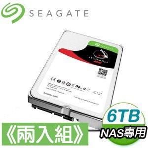 Seagate 希捷 那嘶狼 6TB NAS專用硬碟《兩入組》