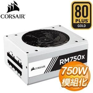 Corsair 海盜船 RM750X 750W 金牌 全模組 電源 器~白~ 10年保