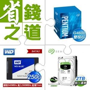 ☆自動省★ G4600/3.6G/3M盒 LGA1151處理器(X3)+WD 威騰 250G SSD《藍標》(X3)+希捷 新梭魚 2TB 3.5吋硬碟