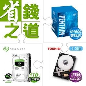 ☆自動省★ G4600/3.6G/3M盒 LGA1151(X2)+希捷 新梭魚 1TB 3.5吋硬碟(X5)+Toshiba 2TB 3.5吋硬碟(X5)