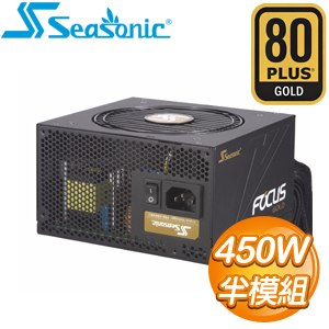 SeaSonic 海韻 SSR-450FM FOCUS Gold 450W 金牌 半模組 電源供應器(7年保)