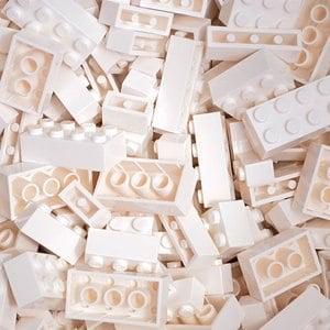 【FY積木大師】300克積木顆粒-白色