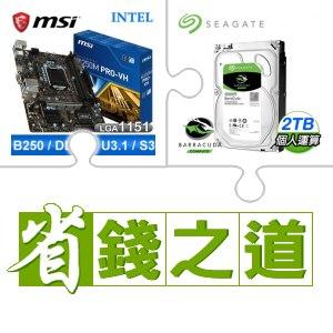 微星B250M PRO-VH主機板(X2) + 希捷 2TB SATA3硬碟(X2)