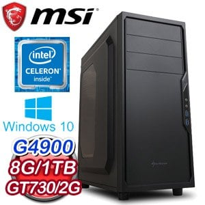 微星 影音系列【流星鎚】G4900雙核 N730K 休閒電腦(8G/1TB/WIN 10)