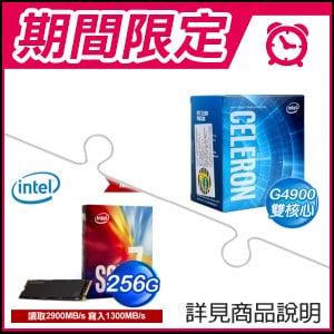 ☆雙11特賣★ G4900 處理器+Intel 760p 256G M.2 SSD