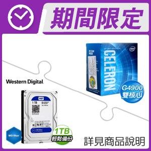 ☆期間限定★ G4900處理器+WD 藍標 1TB 3.5吋硬碟