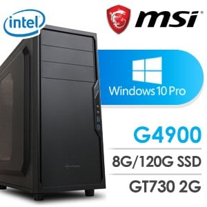 微星 影音系列【蔗香紅茶】G4900雙核 N730K 休閒電腦(8G/120G SSD/Win 10 Pro)