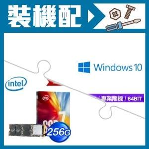 Windows 10 Pro 專業隨機版+Intel 760p 256G M2 SSD