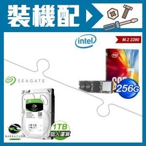 Intel 760p 256G M.2 SSD+希捷 1TB硬碟