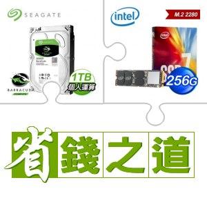 ☆自動省★ 希捷 新梭魚 1TB 電腦硬碟(X2)+Intel 760p 256G M.2 SSD 彩盒全球保固(X2)