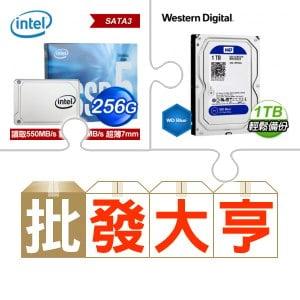 Intel 545S 256G SSD(X8)+WD 1TB硬碟(X8)