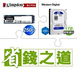☆自動省★ 金士頓 A2000 250G M.2 PCIe SSD(X2)+WD 藍標 1TB硬碟(X5)