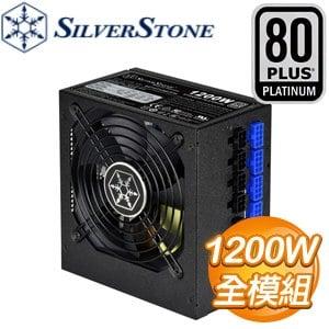 SilverStone 銀欣 ST1200-PTS 1200W 白金牌 全模組 電源供應器(5年保)
