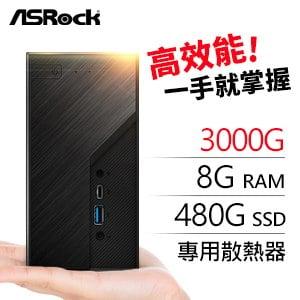 華擎系列【mini釘書機】AMD 3000G雙核 迷你電腦(8G/480G SSD)