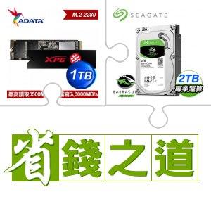 威剛 SX8200 PRO 1TB PCIe SSD(X3)+希捷 新梭魚 2TB硬碟(X5)
